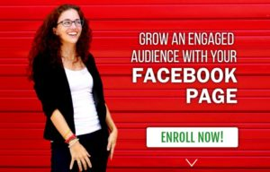 I almost doubled my Facebook Fan page in 2017!